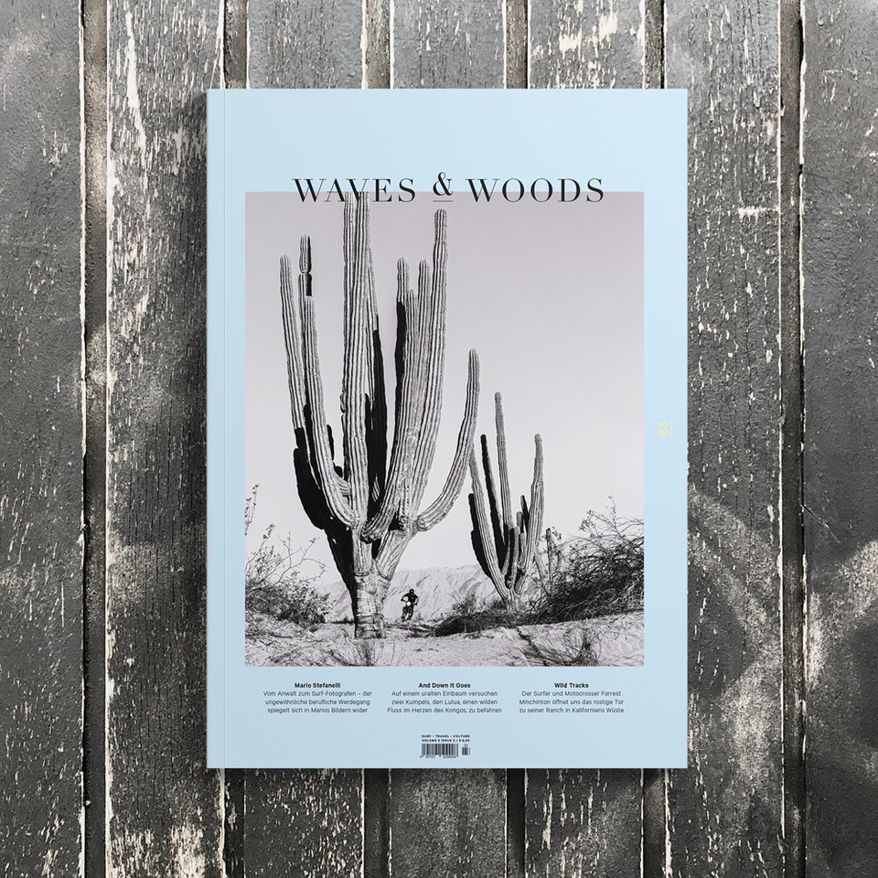 Waves and Woods #23